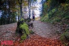 Más otoño. ©aunpasodelacima