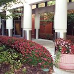 images-Seasonal Color-flowers_4.jpg