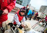 Iditarod2015_0107.JPG