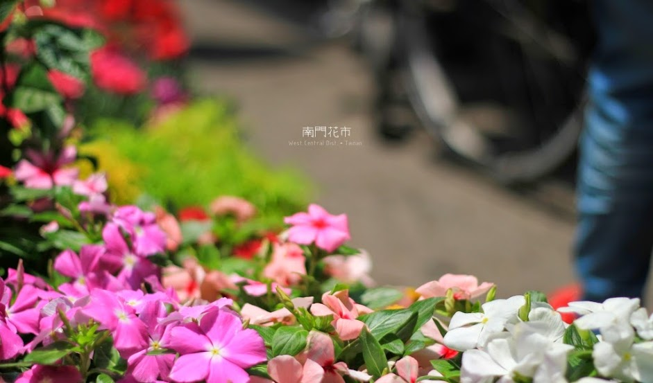 台南中西區景點,南門花市-6