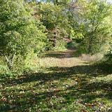 Mountain Lakes Trail Run Fall 2015 - P1040589.JPG