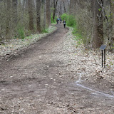 Spring 2016 Run at Institute Woods - DSC_0615.JPG