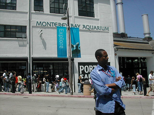 Montery Bay Aquarium, USA - 207779597_a16013e6aa2.jpg