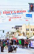 Iditarod2015_0271.JPG