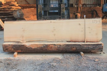 White Pine 173-3  Length 10' Max Width (inches) 29 Min Width (inches) 25 Notes 10/4