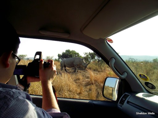 vincent capturing the iconic white rhino at hluhluwe imfolozi game reserve