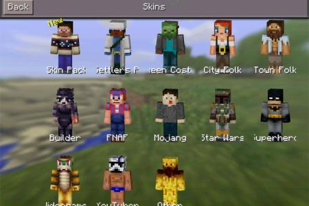 Minecraft Youtubers Skins And Names Path Decorations Pictures - Minecraft pokemon spielen