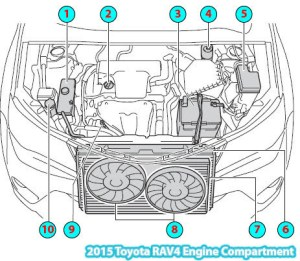 2015 Toyota RAV4 Engine Compartment Diagram
