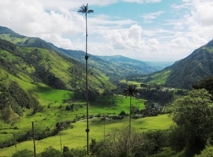 View of Valle de Cocora