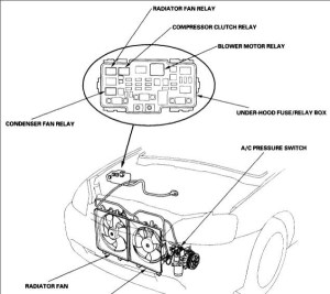 schematics and diagrams: 2001 Honda civic AC pressor relay