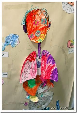 Our Aussie Homeschool ~ Human Body Unit