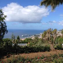 Pretty Madeira...