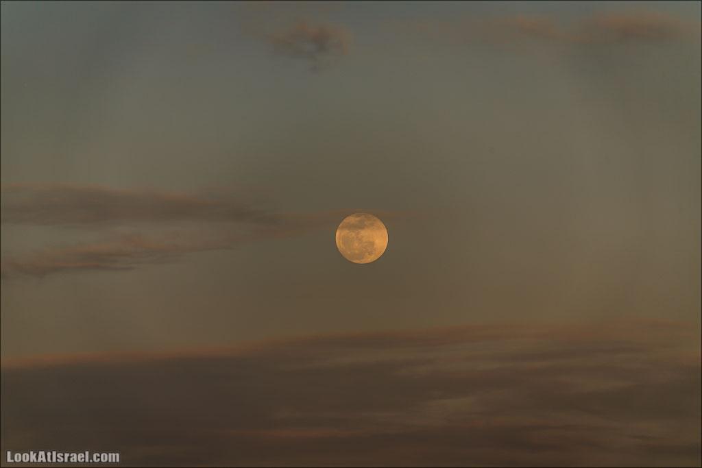 LookAtIsrael.com: Фото-блог о путешествиях по Израилю. Тель Авив, Иерусалим, Хайфа В ту ночь обещали особо красивое, красное лунное затмение, но… увы и ах - в Израиле его не было видно