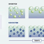 biotem-NOTICIA.jpg