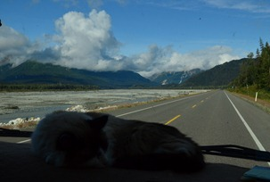 on the road again, up the Chilkat River
