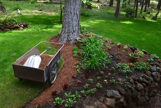 mulching the flower beds