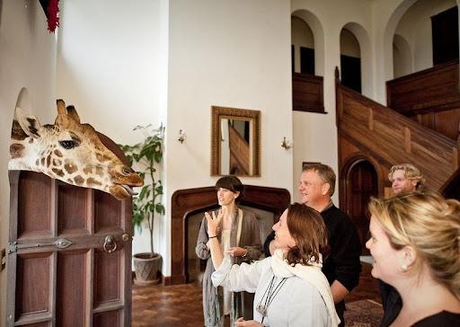 giraffa-maniero-9