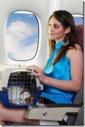 levar um cachorro no avião