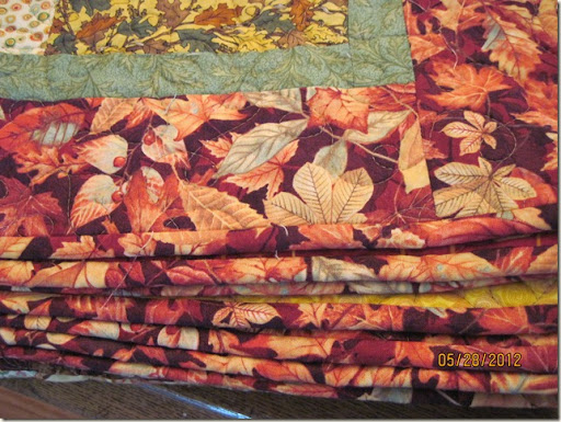 booked quilt 005