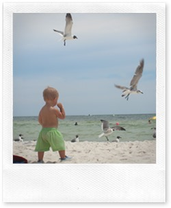 beachtrip2013-maddie 3 month 048