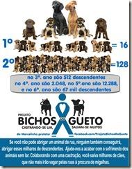 projeto-bichos-do-gueto-01