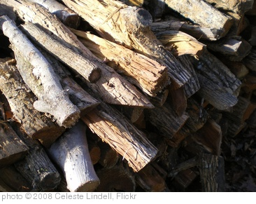 'Wood pile' photo (c) 2008, Celeste Lindell - license: http://creativecommons.org/licenses/by/2.0/