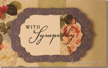 websters simple sympathy a1 closeup