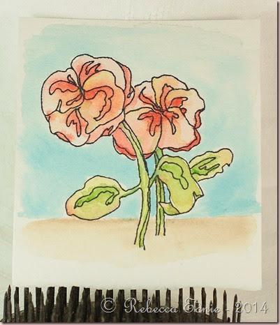 poppy watercolour