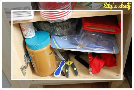 kitchen pantry clutter pet shelf