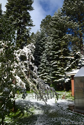 late spring snow at Rocky Point