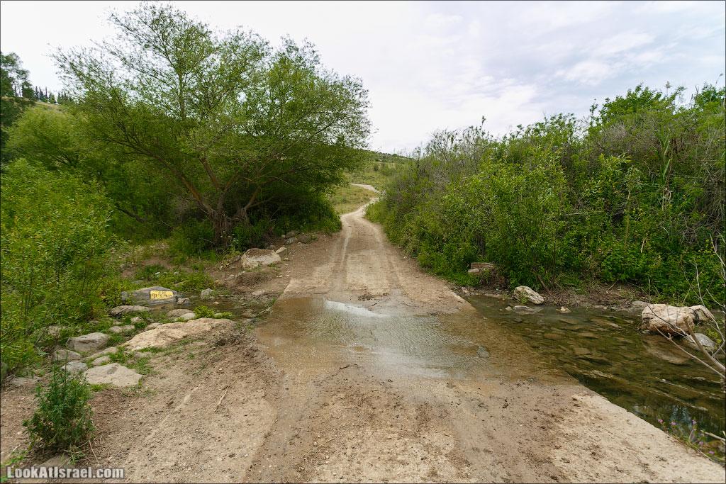 LookAtIsrael.com: Фото-блог о путешествиях по Израилю. Тель Авив, Иерусалим, Хайфа Ну, а затем была