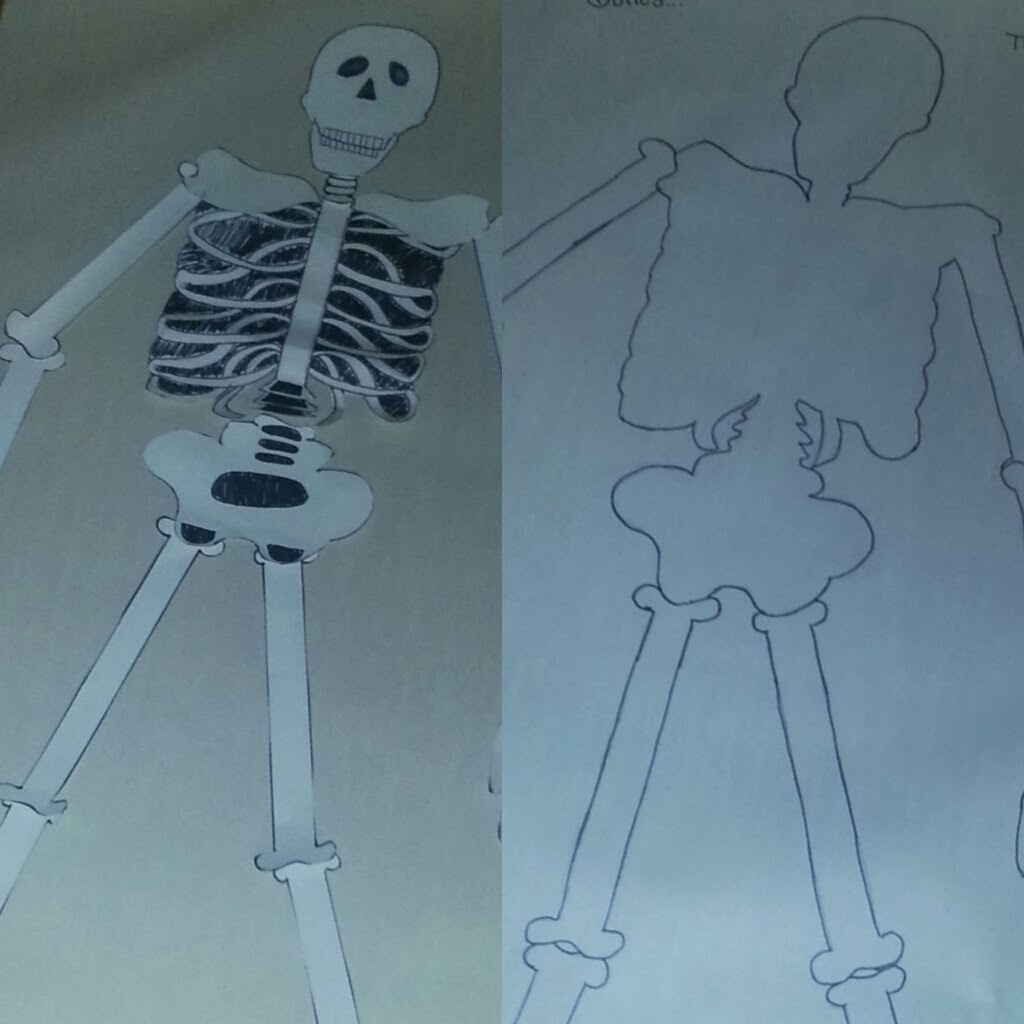 Peterson Speech Therapy Mr Bones The Skeleton Scavenger