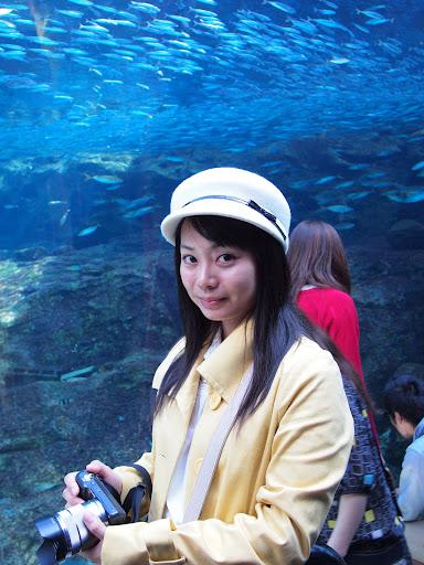 【景點】【柯南旅行團】日本九州HUIS TEN BOSCH 豪斯登堡ONE PIECE海賊王新世界主題園區三日紀行: 水母研究所!西海國立公園,九十九島 Day2 Part3 Anime & Comic & Game 九州 區域 嗜好 攝影 旅行 日本(Japan) 景點 歷史 銀魂