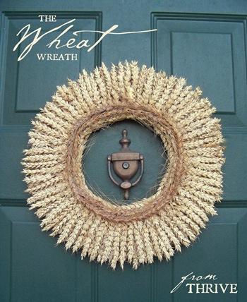 wheat.1b