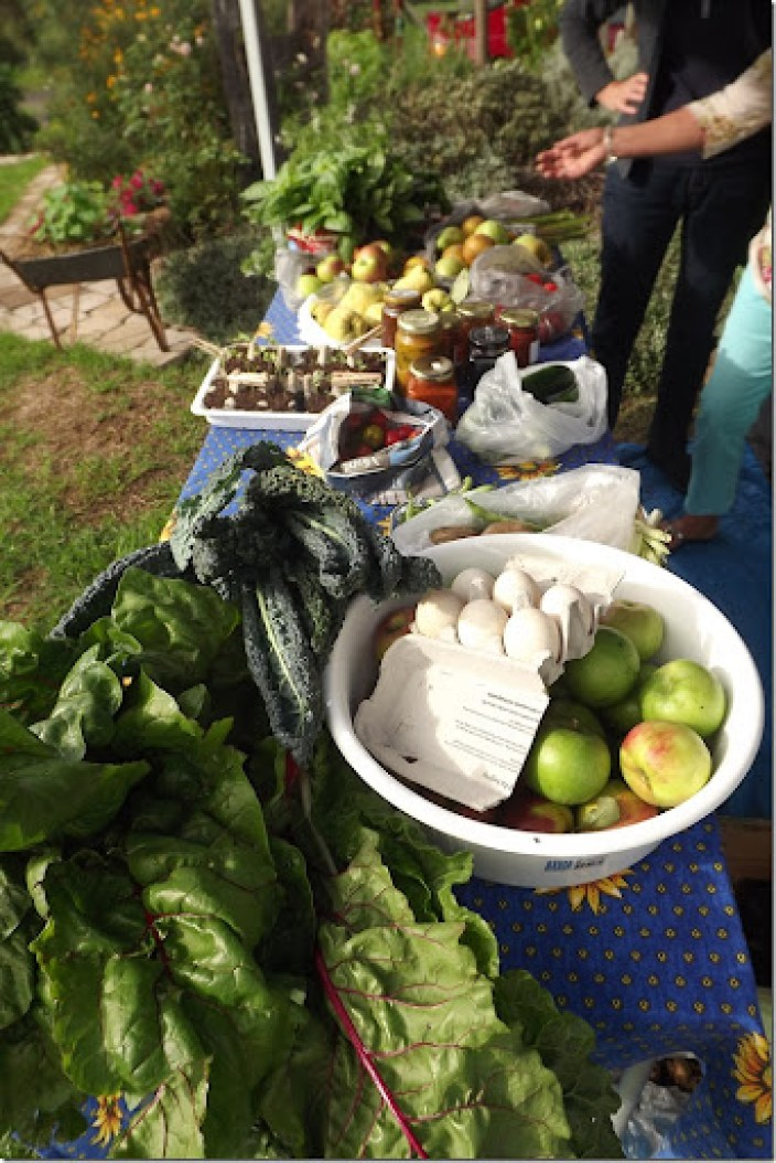 food swap in our lovely bega valley