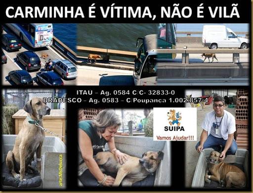 carminha_vitima