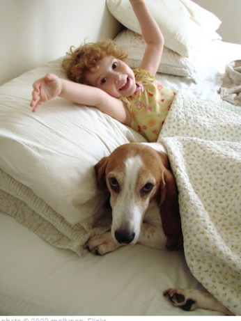 puppy and child in bed