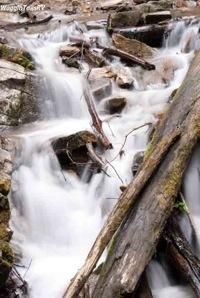 Mingo Falls 6