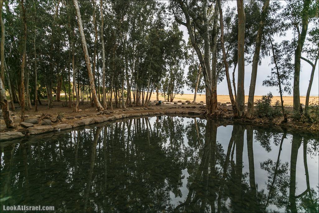 LookAtIsrael.com: Фото-блог о путешествиях по Израилю. Тель Авив, Иерусалим, Хайфа Здесь же живописное озеро, возле которого также любят ставить палатки. Но по ночам наверно тыщи комаров