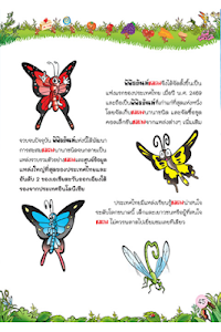 แมลงสัตว์โลกตัวจิ๋ว1 screenshot 2
