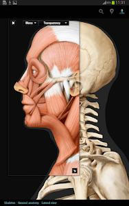 Virtual Human Body screenshot 11