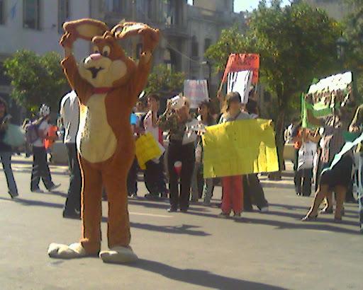 Manifestación del Viernes 23 de Mayo