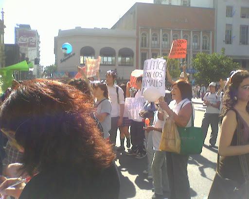 Manifestantes en Plaza Independencia