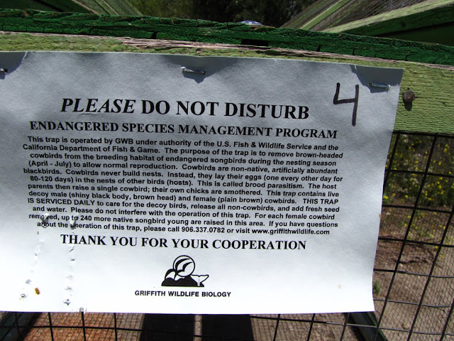 Sign from Griffith Wildlife Biology explaining the Endangered Species Management Program