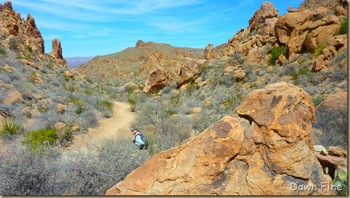 Grapevine to Balanced rock_032