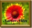 nature-notes2