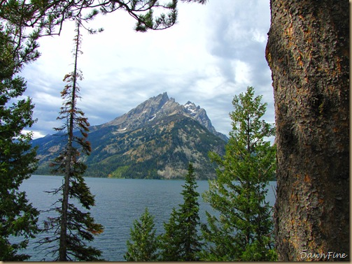 Drive in tetons_20090913_089