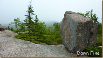Gorham mt hike_088