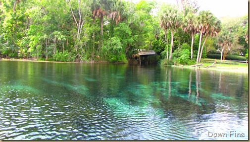 Silver Springs State Park_103