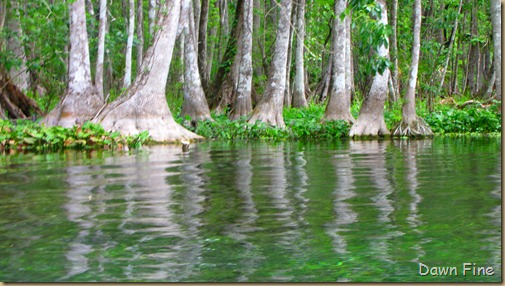 Silver Springs State Park_173